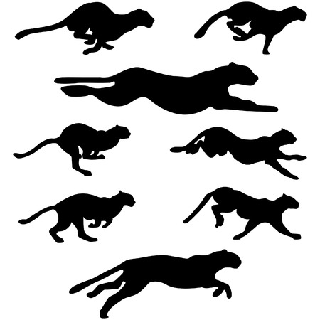 Set of different wildcats running silhouettes for design use