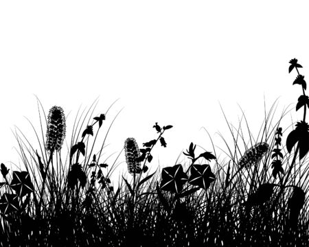Vector grass silhouettes background. All objects are separated. Stock Vector - 5804570