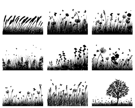 Vector grass silhouettes backgrounds set. All objects are separated. Stock Vector - 5837821
