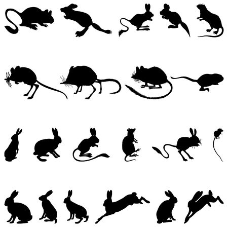 rodents: Collection of rodents silhouettes. Vector illustration.