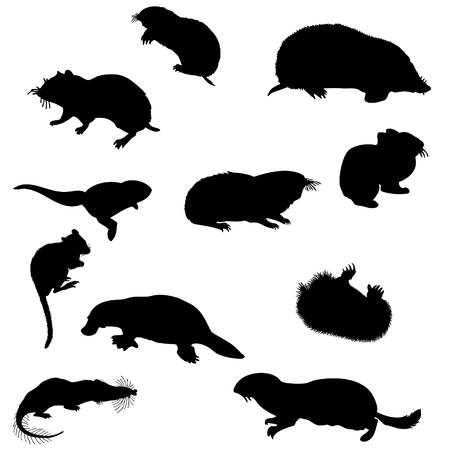 Collection of beaver and other rodents silhouettes. Vector illustration. Vector