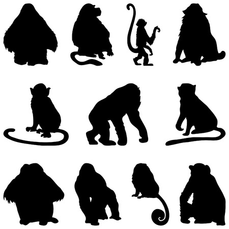 foots: Collection of apes silhouettes. Vector illustration. Illustration