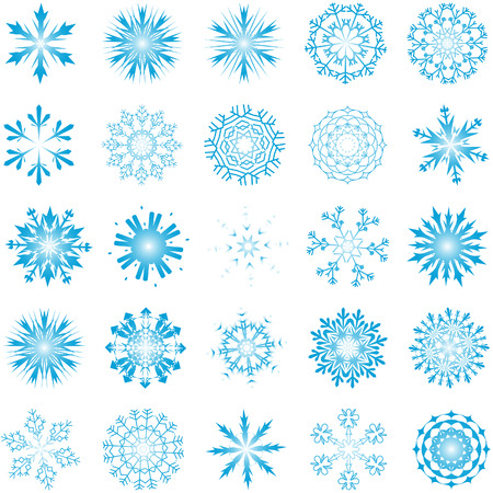 Collection of vector snowflakes in different shape Vector