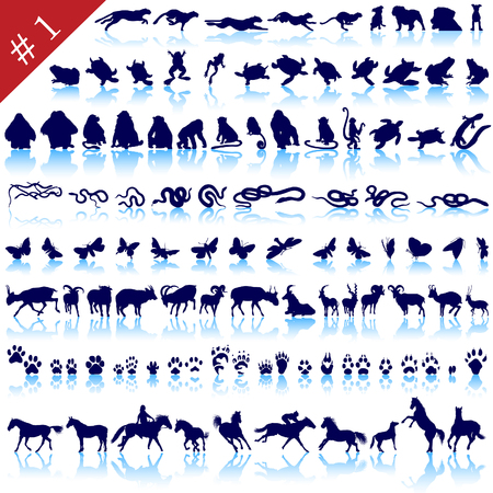 Set of different animals, birds, insects and fishes vector\ silhouettes