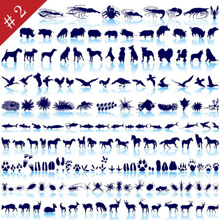 Set of  different animals, birds, insects and fishes  vector silhouettes Stock Vector - 6094503