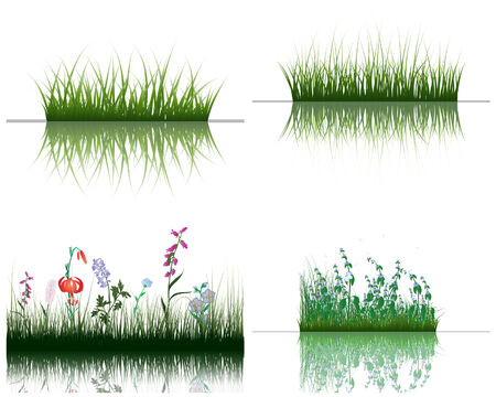 Vector grass silhouettes backgrounds set with reflection in water. All objects are separated. Stock Vector - 6312522
