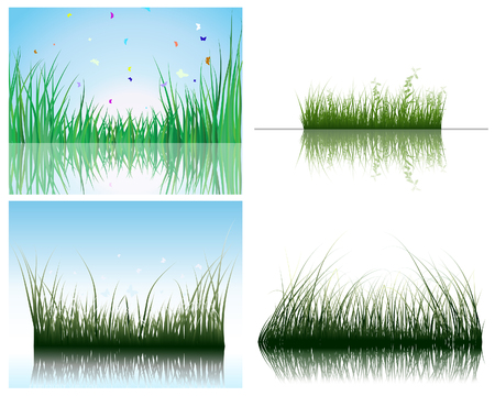 Vector grass silhouettes backgrounds set with reflection in water. All objects are separated. Stock Vector - 6330064