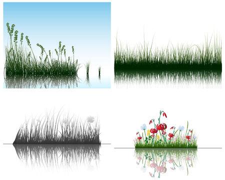 Fondos de siluetas de hierba de vector se establece con la reflexión en el agua. Todos los objetos están separados.