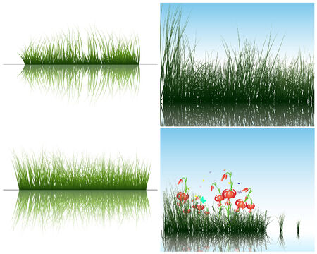 Vector grass silhouettes backgrounds set with reflection in water. All objects are separated. Stock Vector - 6334021