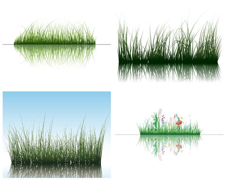 shrubs: Vector grass silhouettes backgrounds set with reflection in water. All objects are separated.