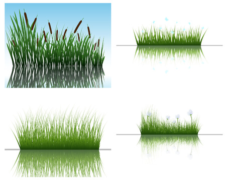 bog: Vector grass silhouettes backgrounds set with reflection in water. All objects are separated.