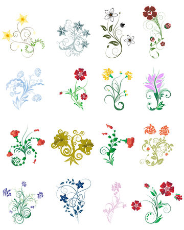 Set of different flower and leaves for self-supporting making floral ornate. Illustration