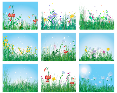 Vector grass silhouettes backgrounds set. All objects are separated. Stock Vector - 6509447