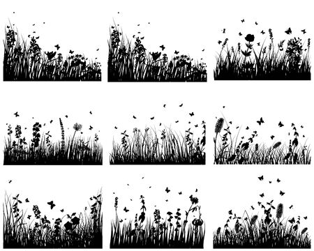 Vector grass silhouettes backgrounds set. All objects are separated. Stock Vector - 6509449
