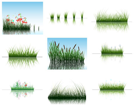 Vector grass silhouettes backgrounds set with reflection in water. All objects are separated. Stock Vector - 6509469