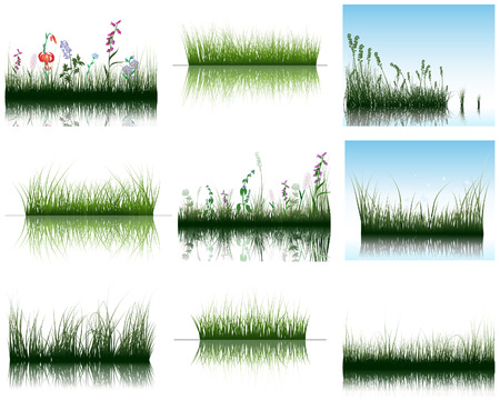 Vector grass silhouettes backgrounds set with reflection in water. All objects are separated. Vector