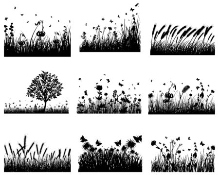 Vector grass silhouettes backgrounds set. All objects are separated. Stock Vector - 6522099
