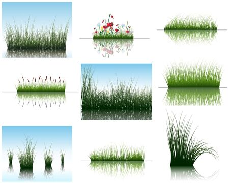 Vector grass silhouettes backgrounds set with reflection in water. All objects are separated. Stock Vector - 6522098