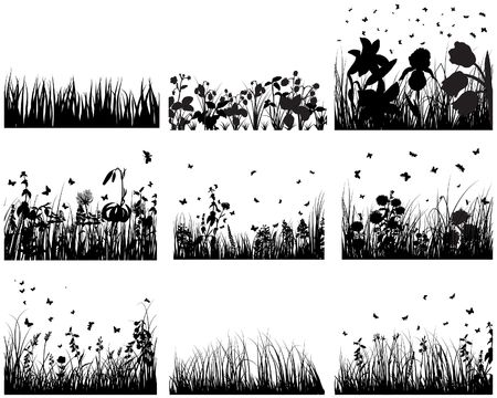 Vector grass silhouettes backgrounds set. All objects are separated. Stock Vector - 6522067