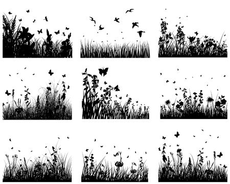 Vector grass silhouettes backgrounds set. All objects are separated. Stock Vector - 6522071