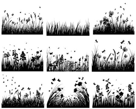 grass silhouettes backgrounds set. All objects are separated. Stock Vector - 6531422