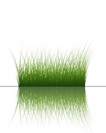 grass silhouettes background with reflection in water. All objects are separated. Stock Vector - 7004433