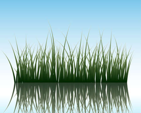 grass silhouettes background with reflection in water. All objects are separated. Stock Vector - 7185109