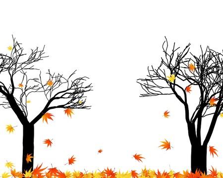 Muster der Herbst Maples verlässt. Abbildung.
