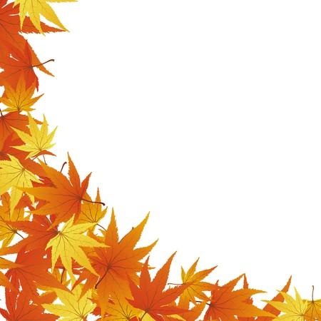 Pattern of autumn  maples leaves.  illustration. Stock Illustration - 7720877