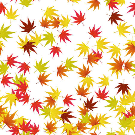 Seamless pattern of autumn  maples leaves. illustration. illustration