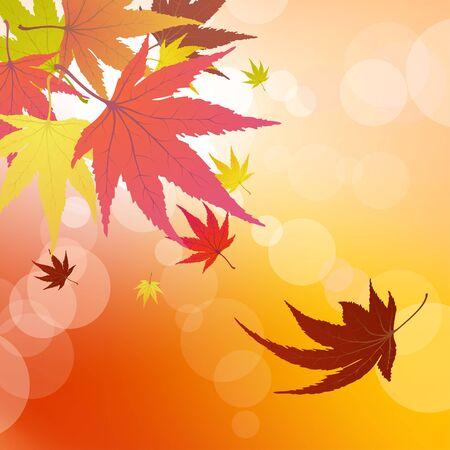 Pattern of autumn  maples leaves.   illustration. Stock Vector - 7763741