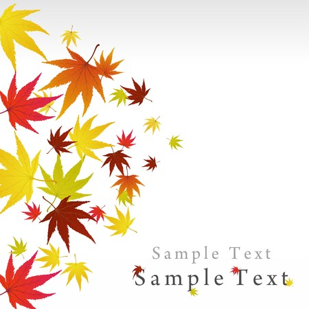 Pattern of autumn  maples leaves.  illustration. Stock Vector - 7763677