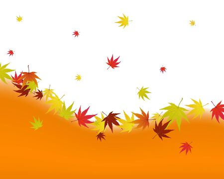 Pattern of autumn  maples leaves. illustration. Vector