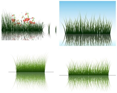 grass silhouettes backgrounds set with reflection in water. All objects are separated. Stock Vector - 7822696