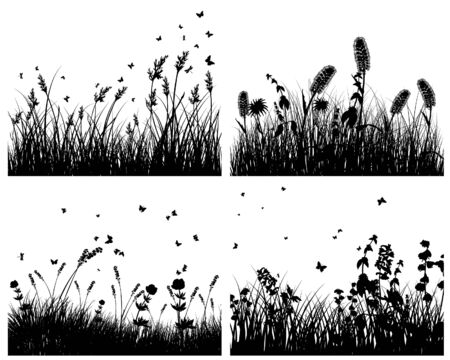 field of flowers: Set of four grass silhouettes backgrounds  Illustration