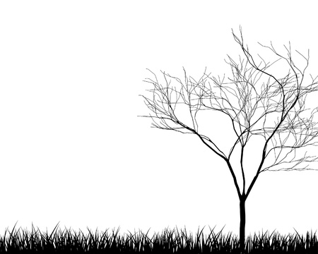 landscaped garden:  grass silhouettes background. All objects are separated.