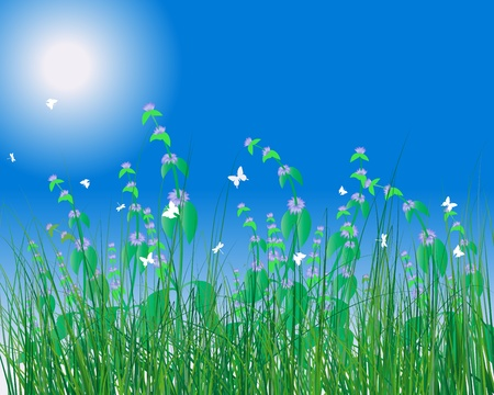 Vector grass silhouettes background. All objects are separated. Stock Vector - 8845799