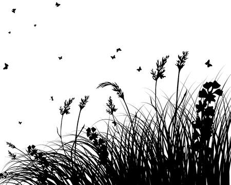 grass land: Fondo de siluetas de hierba. Todos los objetos est�n separados. Vectores