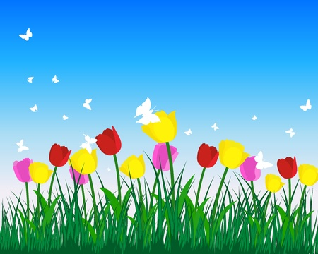 landscaped: Meadow background with tulips. All objects are separated. Vector illustration.