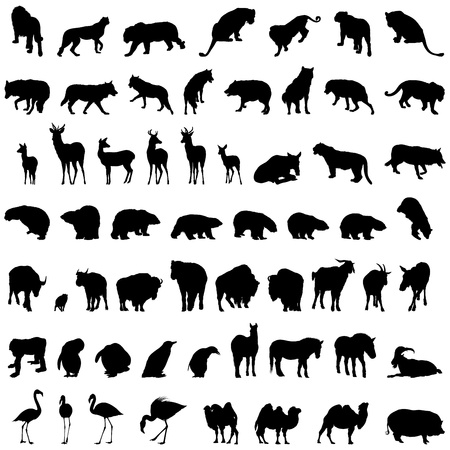 Big collection of different animal silhouettes Ilustração
