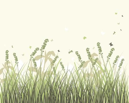 buisson: Arrière-plan vecteur silhouettes des graminées. Tous les objets sont séparés. Illustration