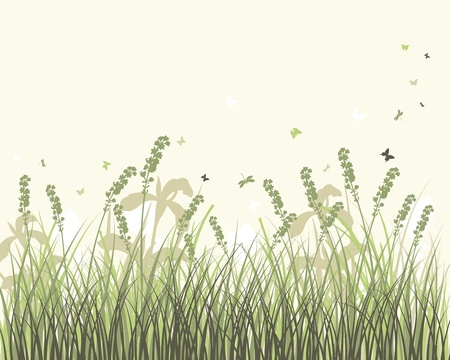 insect leaf: Vector grass silhouettes background. All objects are separated. Illustration