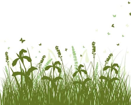 Fondo de siluetas de hierba de vector. Todos los objetos están separados.
