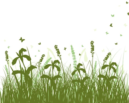 landscaped: Vector grass silhouettes background. All objects are separated. Illustration