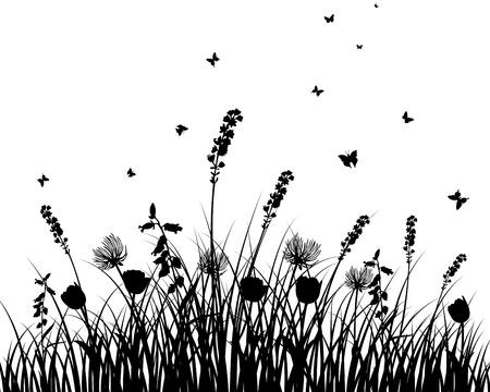 silhouette fleur: Arrière-plan de silhouettes des graminées vecteur. Tous les objets sont séparés. Illustration