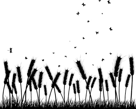 Vector grass silhouettes background. All objects are separated. Stock Vector - 10089318
