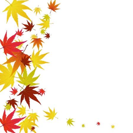 Motif de feuilles d'érable automne. Illustration vectorielle