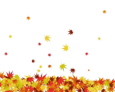 fall leaves border: Pattern of autumn  maples leaves. Vector illustration.