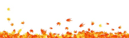 autumn leaf frame: Pattern of autumn  maples leaves. Vector illustration.