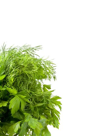 Fresh green parsley and dill with water drop isolated on white background photo